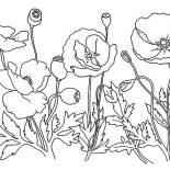 Poppy, Garden Of Poppy Coloring Page: Garden of Poppy Coloring Page
