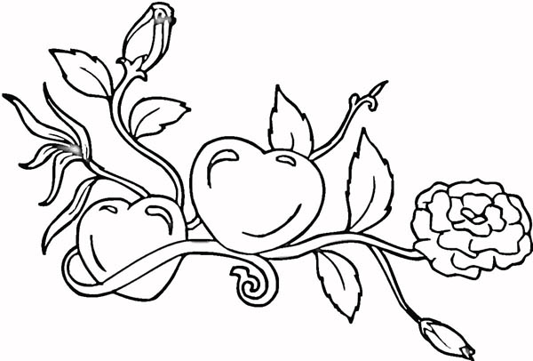 Hearts & Roses, : Growing Hearts and Roses Coloring Page