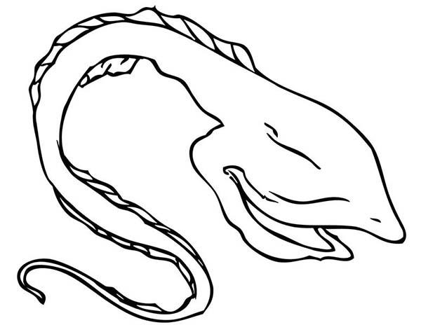 Eel, : Gulper Eel Coloring Page