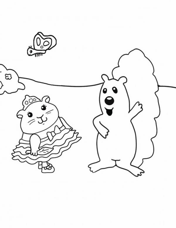 Guinea Pig, : Hamster and Squireel in Guinea Pig Coloring Page