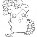Guinea Pig, Hamtaro Hamster In Guinea Pig Coloring Page: Hamtaro Hamster in Guinea Pig Coloring Page