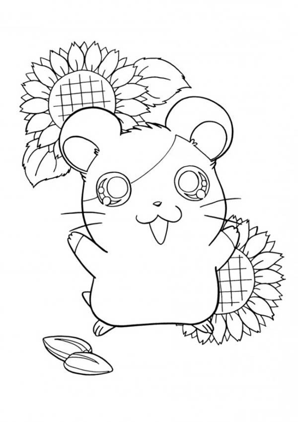 Guinea Pig, : Hamtaro Hamster in Guinea Pig Coloring Page