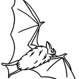 Bats, Hungry Bats Coloring Page: Hungry Bats Coloring Page