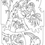 Sloth, Hungry Sloth Finding Food Coloring Page: Hungry Sloth Finding Food Coloring Page