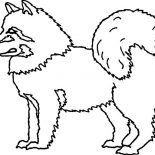 Eskimo, Husky Dog Is Eskimo Pet Coloring Page: Husky Dog is Eskimo Pet Coloring Page