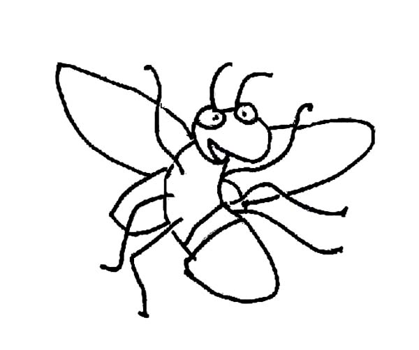 Firefly, : Kids Drawing of Firefly Coloring Page