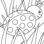 Lady Bug, Lady Bug Behind The Grass Coloring Page: Lady Bug Behind the Grass Coloring Page