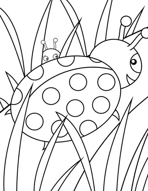 Lady Bug, : Lady Bug Behind the Grass Coloring Page