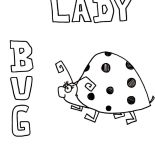 Lady Bug, Lady Bug Drawing Coloring Page: Lady Bug Drawing Coloring Page
