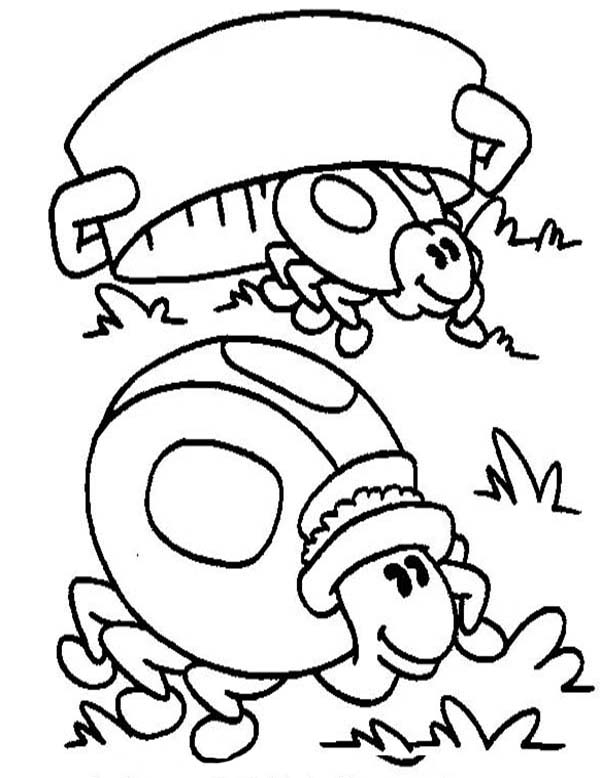 Lady Bug, : Lady Bug Hiding from Predator Coloring Page