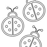 Lady Bug, Lady Bug Outline Coloring Page: Lady Bug Outline Coloring Page