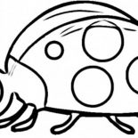 Lady Bug, Lady Bug Seems Confused Coloring Page: Lady Bug Seems Confused Coloring Page
