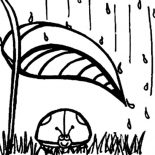 Lady Bug, Lady Bug In The Rain Coloring Page: Lady Bug in the Rain Coloring Page