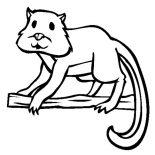 Lemur, Lemur Picture Coloring Page: Lemur Picture Coloring Page