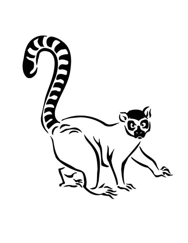 Lemur Walking Cautiously Coloring Page : Color Luna