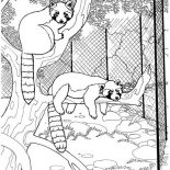 Lemur, Lemur In The Cage Coloring Page: Lemur in the Cage Coloring Page