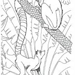Lemur, Lemur In The Zoo Coloring Page: Lemur in the Zoo Coloring Page