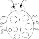 Lady Bug, Lovely Lady Bug Coloring Page: Lovely Lady Bug Coloring Page