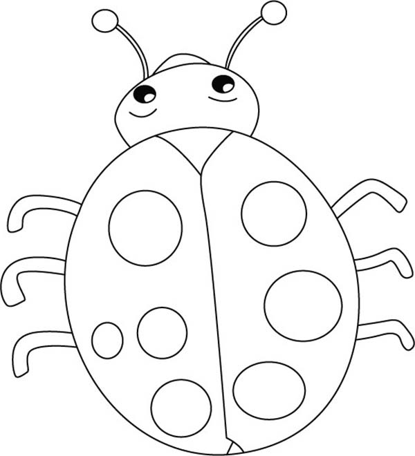 Lady Bug, : Lovely Lady Bug Coloring Page