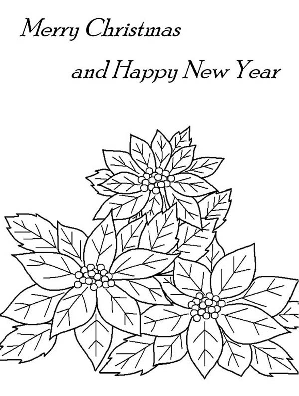 Poinsettia, : Merry Christmas and Happy New Year with Poinsettia Coloring Page