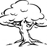 Oak Tree, Oak Tree Coloring Page For Kids: Oak Tree Coloring Page for Kids