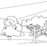 Oak Tree, Oak Tree Forest Coloring Page: Oak Tree Forest Coloring Page