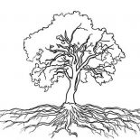 Oak Tree, Oak Tree Massive Roots Coloring Page: Oak Tree Massive Roots Coloring Page