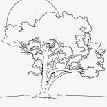 Oak Tree, Oak Tree In The Night Coloring Page: Oak Tree in the Night Coloring Page