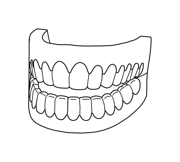 Dental Health, : Picture of Full Teeth in Dental Health Coloring Page