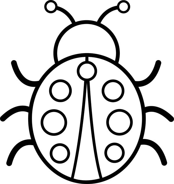 Lady Bug, : Picture of Lady Bug Coloring Page