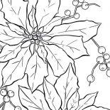 Poinsettia, Poinsettia Fruit Coloring Page: Poinsettia Fruit Coloring Page