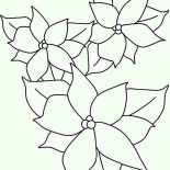 Poinsettia, Poinsettia Outline Coloring Page: Poinsettia Outline Coloring Page