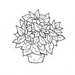 Poinsettia, Poinsettia In Ceramics Coloring Page: Poinsettia in Ceramics Coloring Page