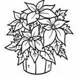 Poinsettia, Poinsettia In A Bucket Coloring Page: Poinsettia in a Bucket Coloring Page