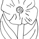 Poppy, Poppy Flower Picture Coloring Page: Poppy Flower Picture Coloring Page