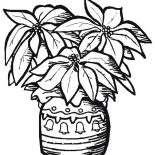Poinsettia, Pottery Poinsettia Coloring Page: Pottery Poinsettia Coloring Page