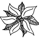 Poinsettia, Pretty Poinsettia Picture Coloring Page: Pretty Poinsettia Picture Coloring Page