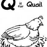 Quail, Q Is For Quail Coloring Page: Q is for Quail Coloring Page