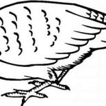 Quail, Quail Find For Food Coloring Page: Quail Find for Food Coloring Page