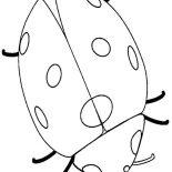 Lady Bug, Six Legged Lady Bug Coloring Page: Six Legged Lady Bug Coloring Page