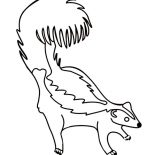 Skunk, Skunk Feel Threatened Coloring Page: Skunk feel Threatened Coloring Page