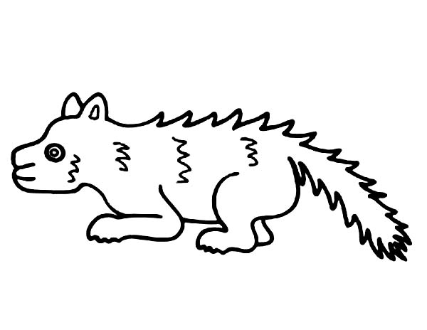 Skunk, : Skunk is Sick Coloring Page