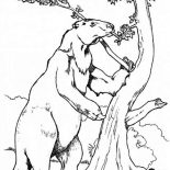 Sloth, Sloth Climb A Tree Coloring Page: Sloth Climb a Tree Coloring Page