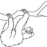 Sloth, Sloth Coloring Page For Kids: Sloth Coloring Page for Kids