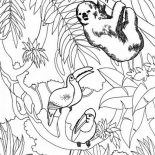 Sloth, Sloth And Birds Coloring Page: Sloth and Birds Coloring Page