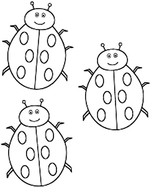 Lady Bug, : Three Cute Lady Bug Coloring Page