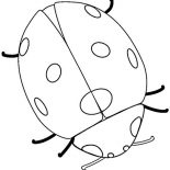 Lady Bug, Very Big Lady Bug Coloring Page: Very Big Lady Bug Coloring Page