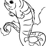 Eel, Wolf Eel Picture Coloring Page: Wolf Eel Picture Coloring Page