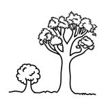 Oak Tree, Young Oak Tree Coloring Page: Young Oak Tree Coloring Page