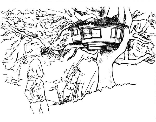 Treehouse, : Amazing Drawing of a Treehouse Coloring Page